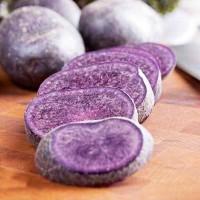 Картофель семенной Гурман